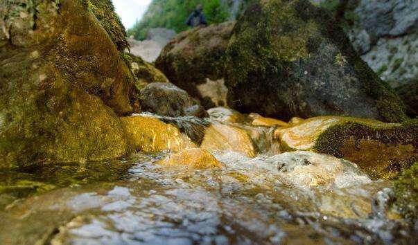 Річка Юпшара