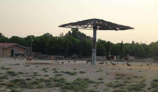 Зоопарк в Ізмірі