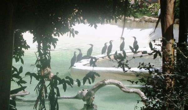 Парк Selwo Marina