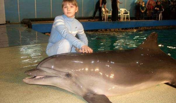 Московський дельфінарій