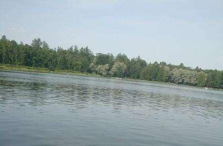 Карпін ставок