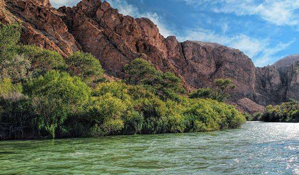 Річка Чарын