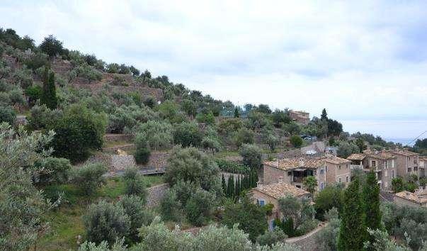 Село Дейя