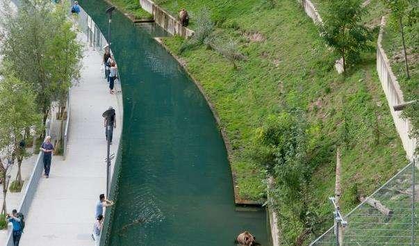 Ведмежий парк Берна